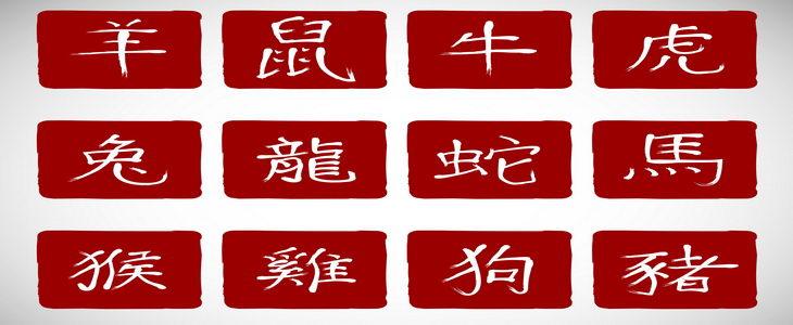 גל גל המזלות סיני